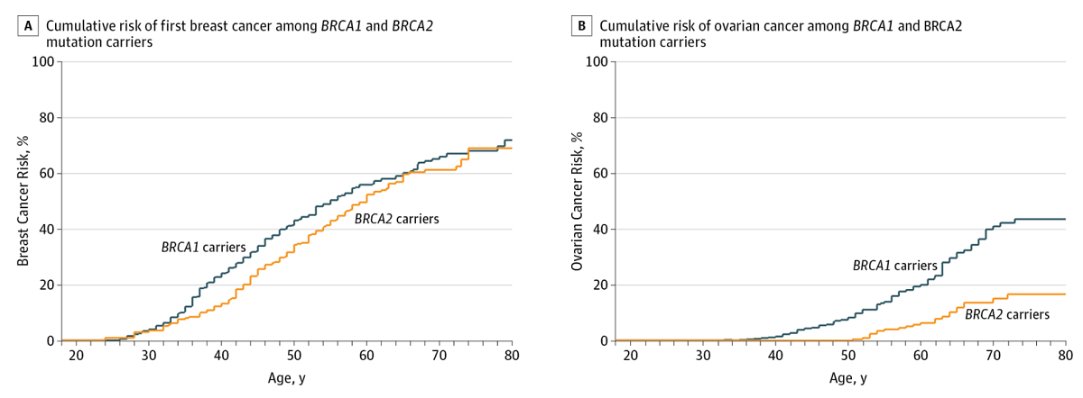 The-Eve-Appeal-BRCA-Lifetime-Risk