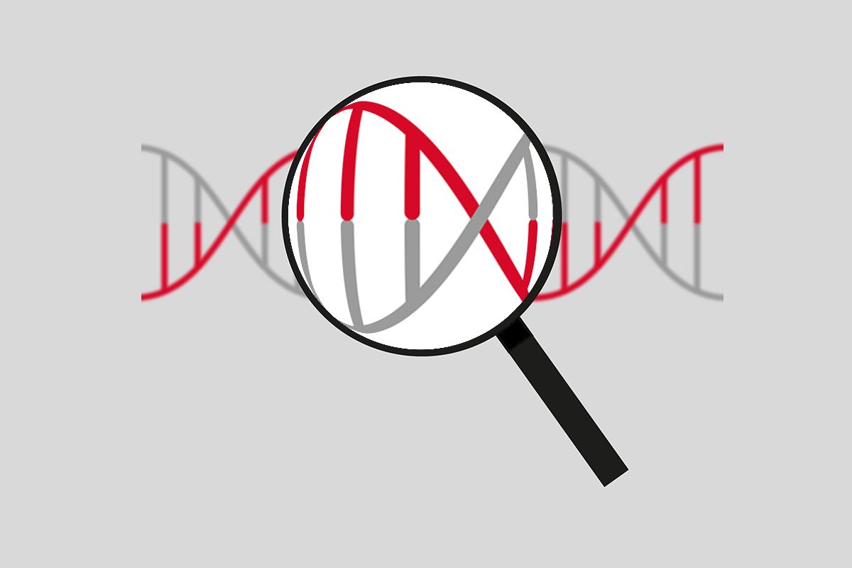 The-Eve-Appeal-Blog-Genetics